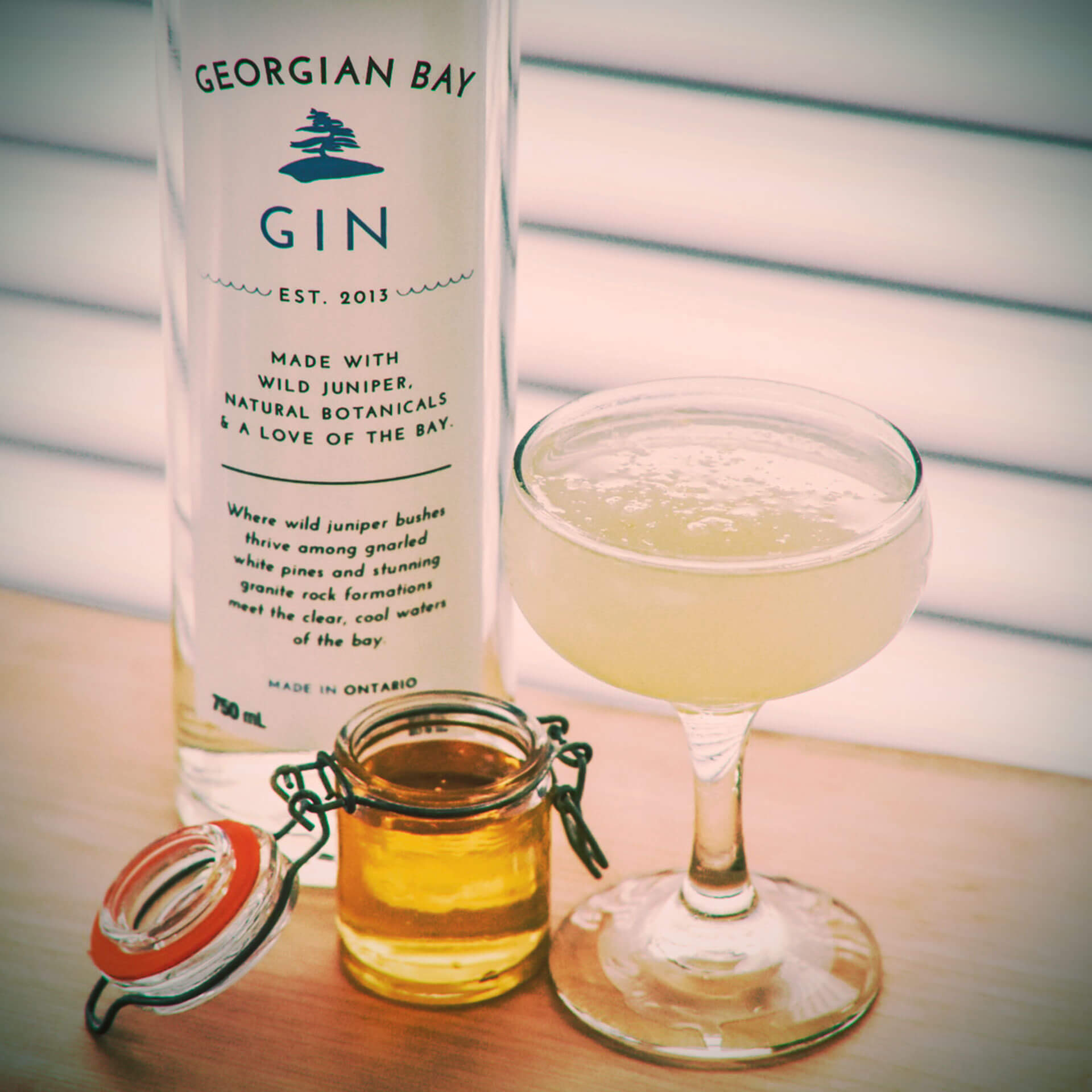 Gin Recipe - Georgian Bees