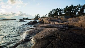 Georgian Bay landscape photo of rocky shores and windswept pines