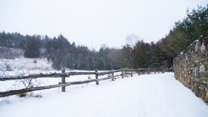 on a wintery day. this photo shows a patch with a fence barrier and rock wall