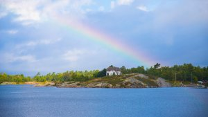 Georgian Bay landscape with a rainbow in the skies ending at the tall standing pines