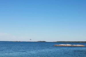 Georgian Bay Spirit Co's float plane in the distance on a clear skied sunny day