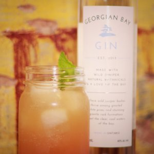 Georgian Bay Gin cocktail - Good times on the bay